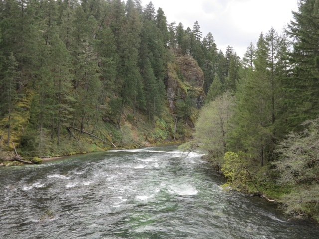 The Umpqua River by the Horsehoe Bend