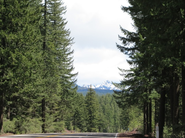 Hwy 20, going down from Tombstone Pass before the merge with 126 farther east