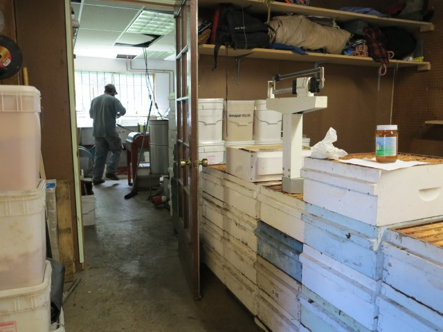 Where the honey is taken from the bee hives.