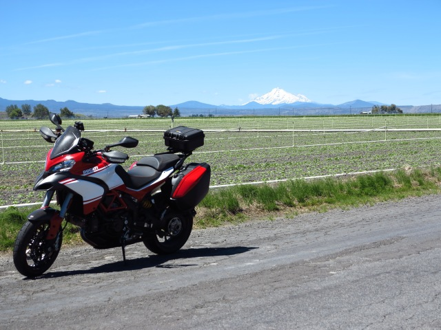 Mt Shasta and irrigated fields.