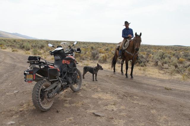 The Steens Gaucho.  Lone Mt. Loop, 2013