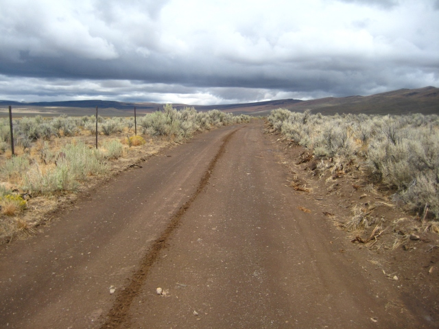 Rincon Flat rd, Lone Mountain Loop, 2010 edition