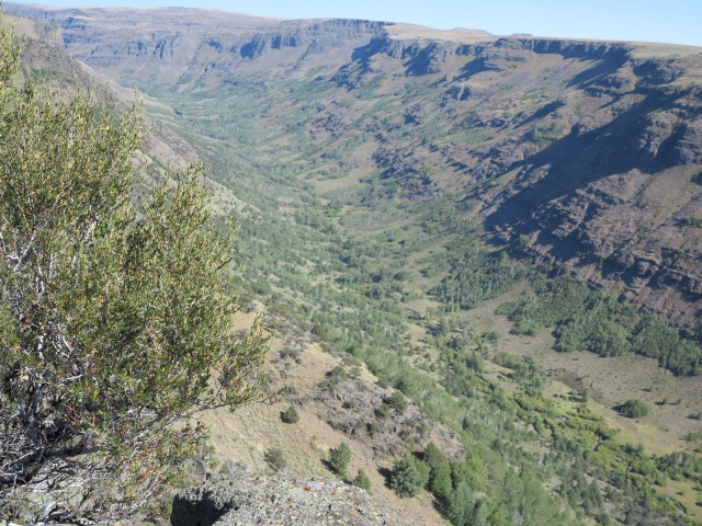 Little Blitzen Gorge, looking towards the Steens Mountain