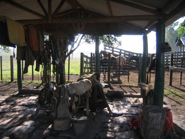 Rancho Las Flores, Vichadero, Uruguay, April 2006.