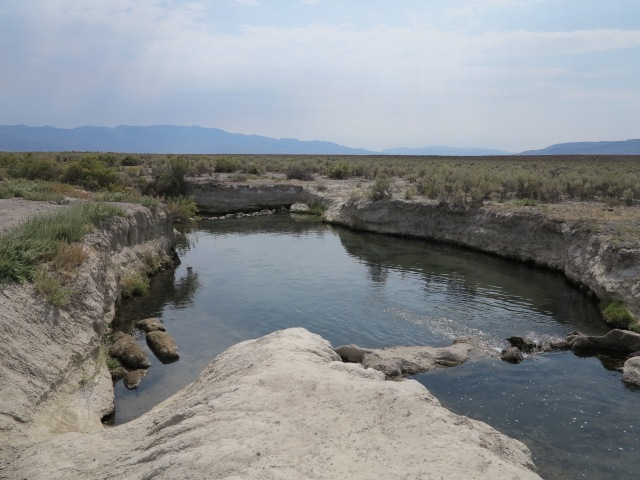 Bog Hot Springs, NV