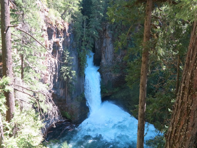 Toketee Falls. Very impressive volume of water.