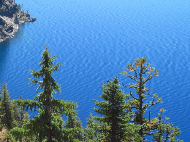 The Deep Blue Waters in Crater Lake