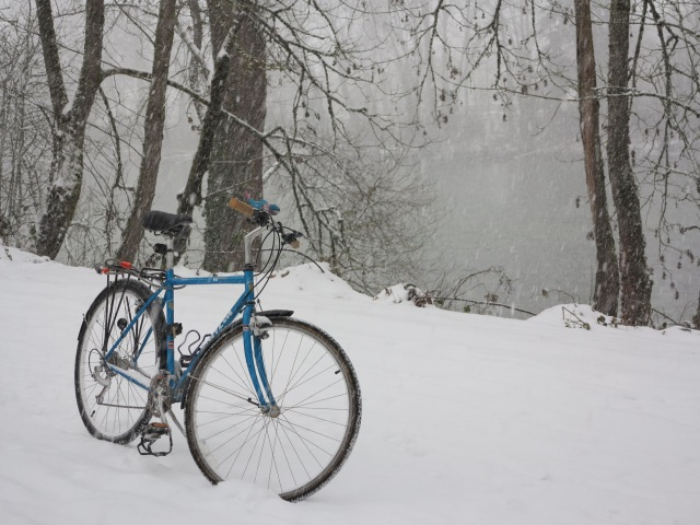 The bicycle and the snowstorm