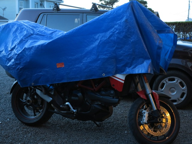 I think I need to get a real bike cover