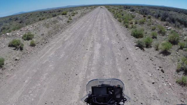 Antelope ahead