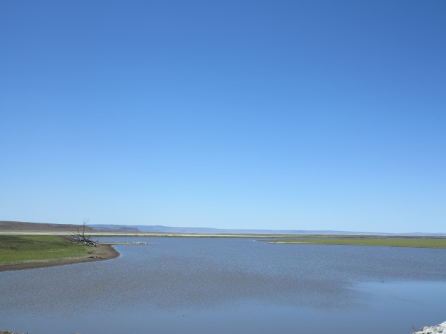 Malheur Lake, June 2014